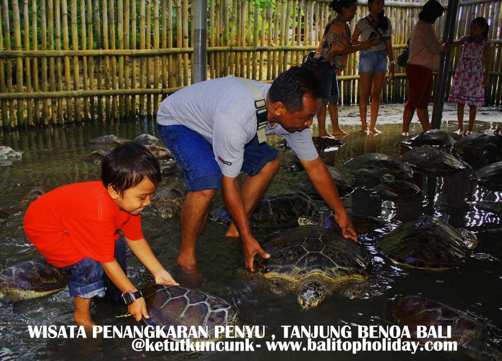 Wisata Pulau Penyu Bali