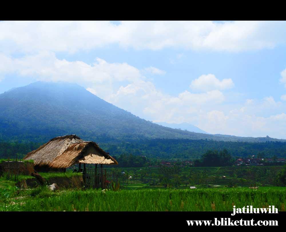 Bali Farming & Tanah Lot Sunset Tour 2