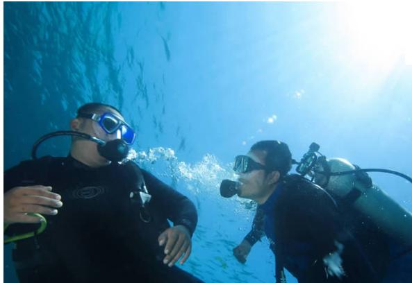 Paket Diving Bali