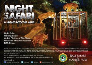 Paket Tour Bali Bird Park + Night Safari