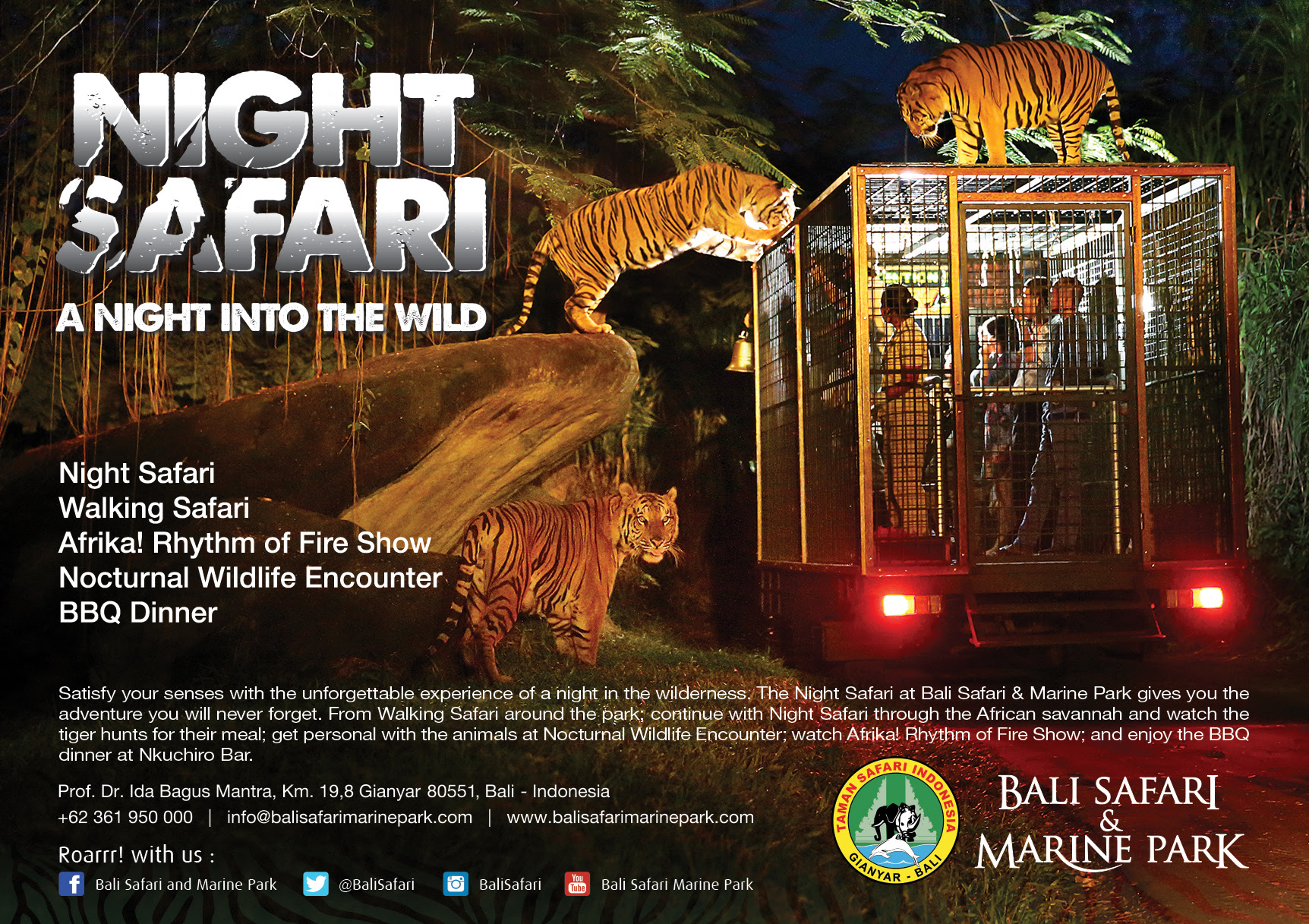Paket Tour Bali Bird Park + Night Safari