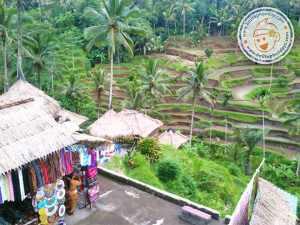 Obyek Wisata Sawah Berundak Tegalalang (Rice Terrace)