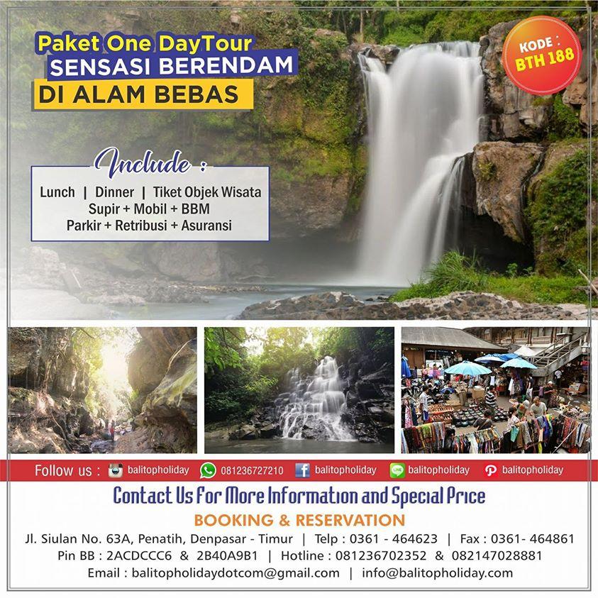 Tour harian Bali