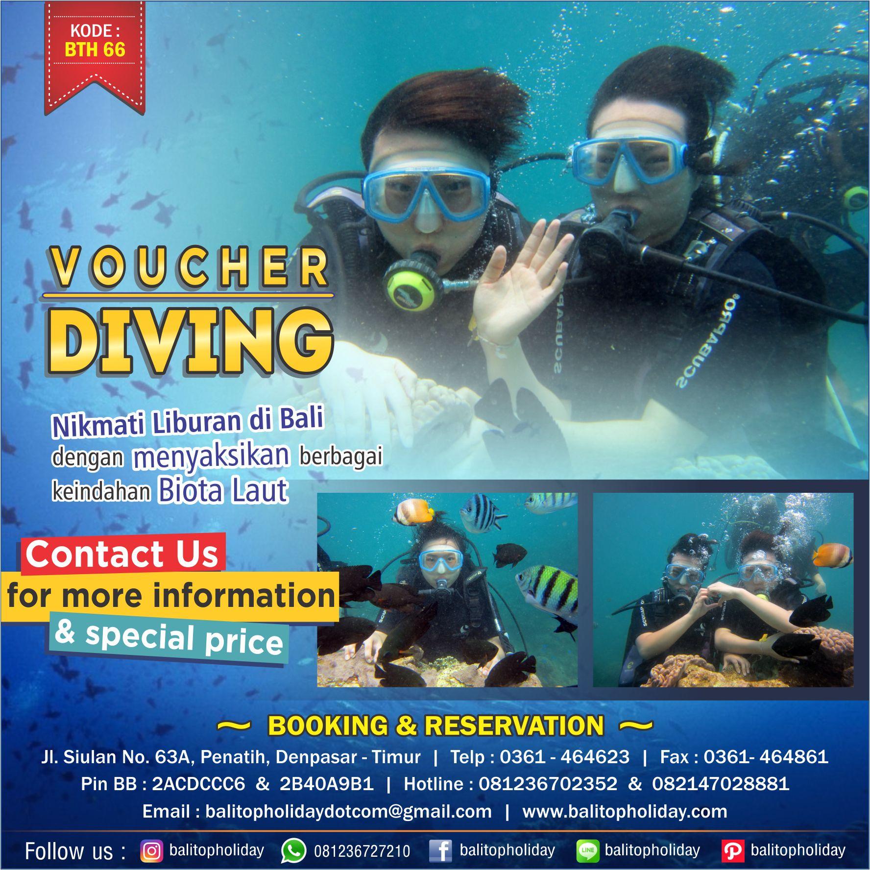 Diving Pemula di Bali (Tanjung Benoa)