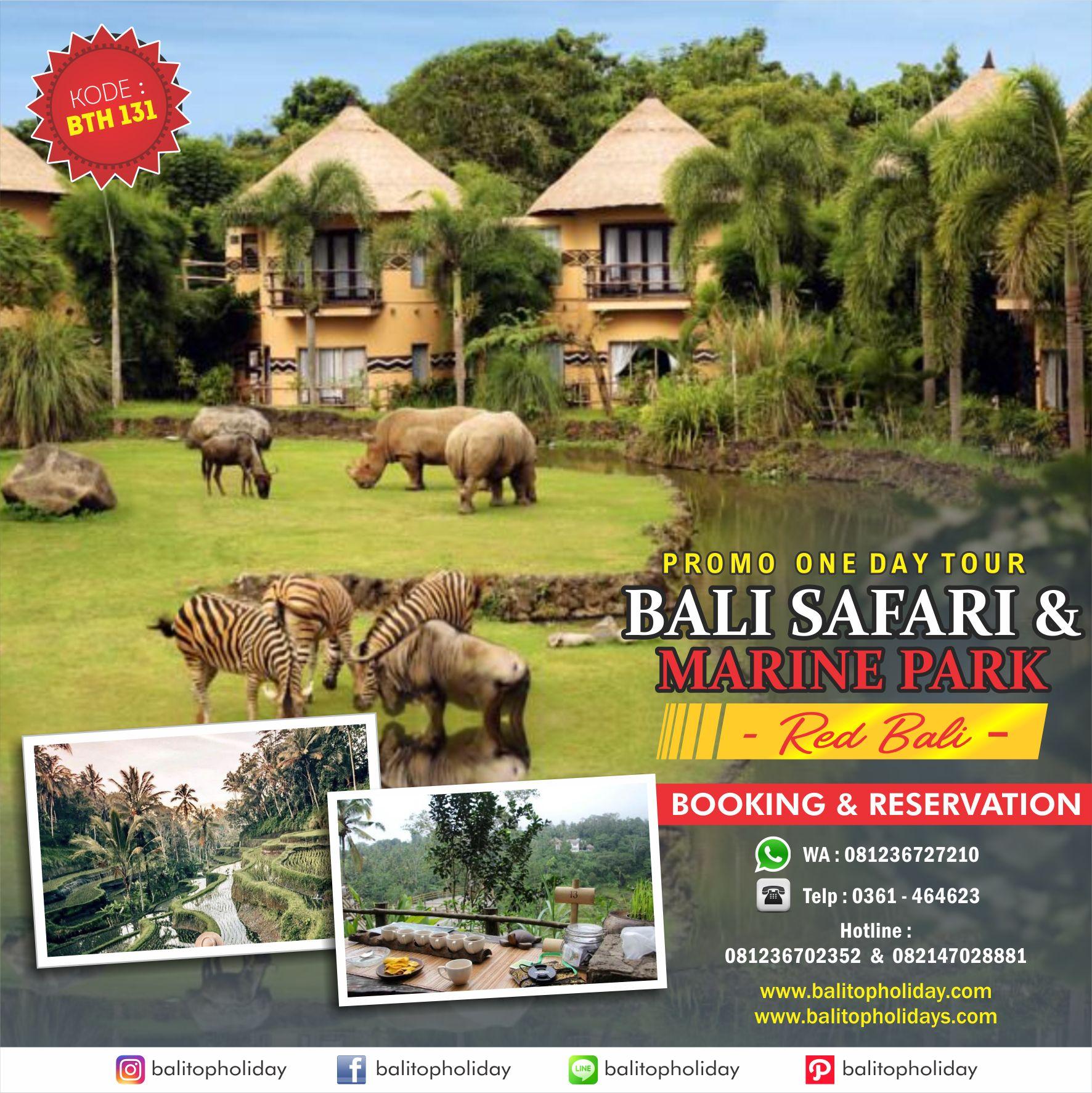 Paket Tour Bali Safari and Marine Park
