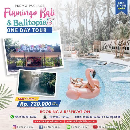 Paket Tour Bali Kekinian Instagram Tour